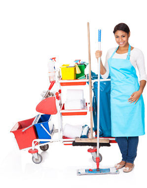 Maid Brite Cleaning Company
